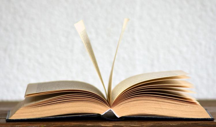 book-2306181_1920